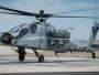 Terbang Perdana, AH-64E Apache Guardian dan CH-47F(I) Chinook India