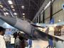 Muncul Perdana, Tejas AF Mk 2 MWF Calon Pengganti Mirage 2000 AU India