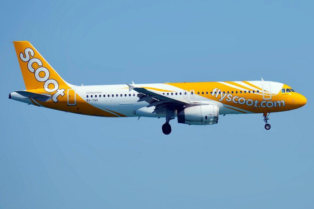 Scoot-A320-TRV-Anna-Zvereva